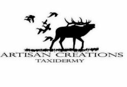 Artisan Creations Taxidermy
