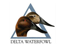 Delta Waterfowl